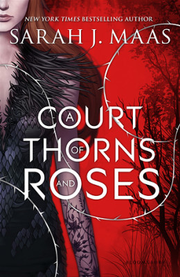 what happened in a court of thorns and roses