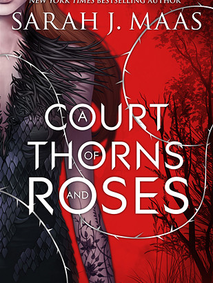 What happened in A Court of Thorns and Roses? (A Court of Thorns and Roses #1)