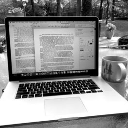 Writing Update and NaNoWriMo 2017 Prep