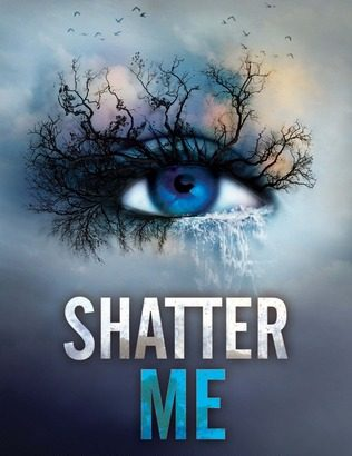 What happened in Shatter Me? (Shatter Me #1)