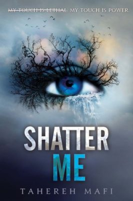 what happened in shatter me