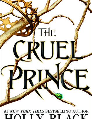 What happened in The Cruel Prince? (The Folk of the Air #1)