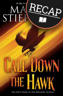 what-happened-in-call-down-the-hawk